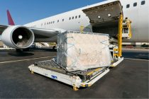 IATA: October Air Freight Demand Up 8.2%