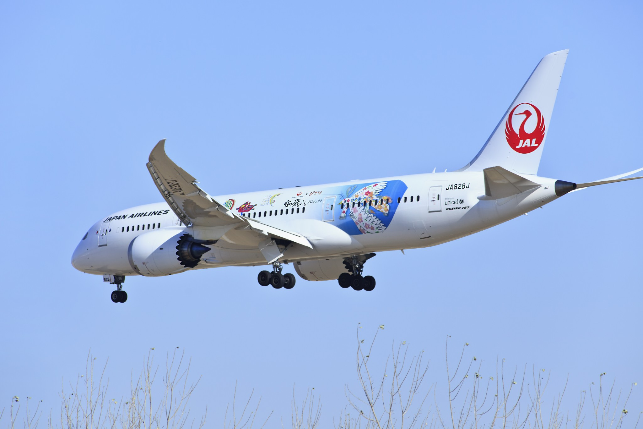 Interjet Airlines inks interline agreement with Japan Airlines